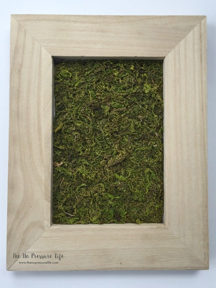 sheet moss in an unfinished wood frame