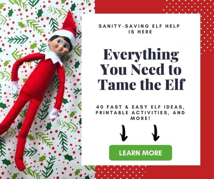 Elf on the Shelf Activity Kit