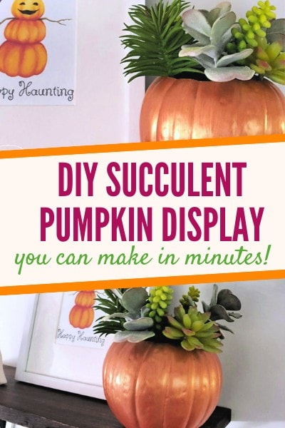 Learn how to make a DIY Faux Succulent Pumpkin Arrangement