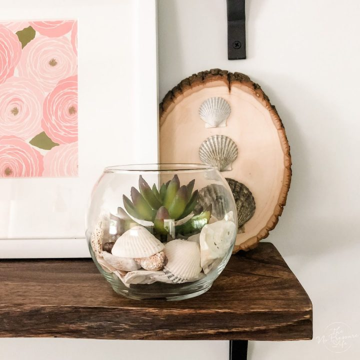 DIY seashell succulent terrarium - easy coastal succulent centerpiece