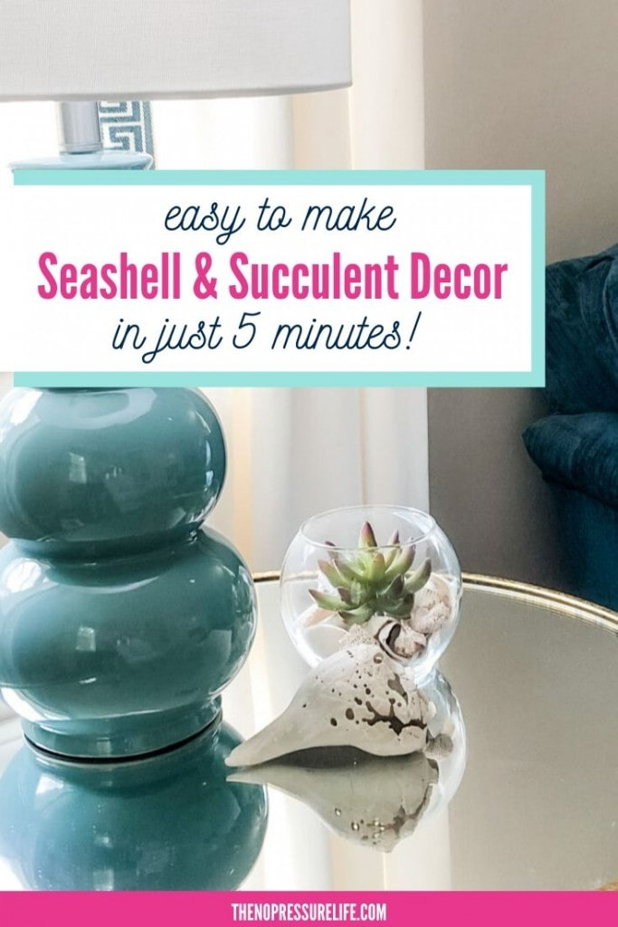 seashell and succulent DIY decor